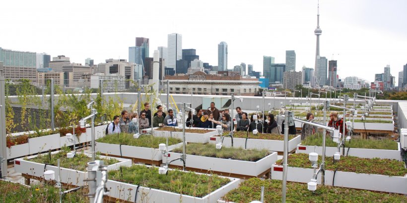 a group of students at grit lab on the roof of One Spadina with the Toronto skyline in the background