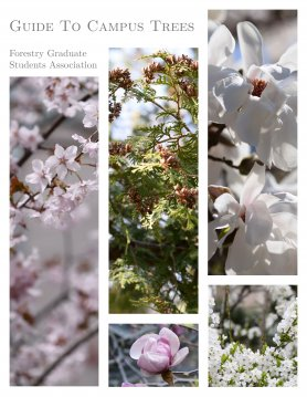 cover of the fgsa guide to campus trees