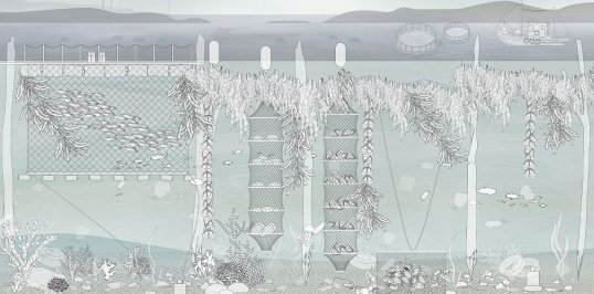 A section showing Chen's proposal for aquaculture along Mumbai's eastern waterfront.
